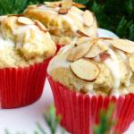 Gluten Free Dairy Free Cardamom Almond Muffins