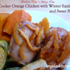 Gluten Free-zer Friday - Slow Cooker Orange Chicken with Winter Squash & Sweet Potatoes