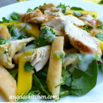 Gluten Free Dairy Free Curried Chicken Mango Salad