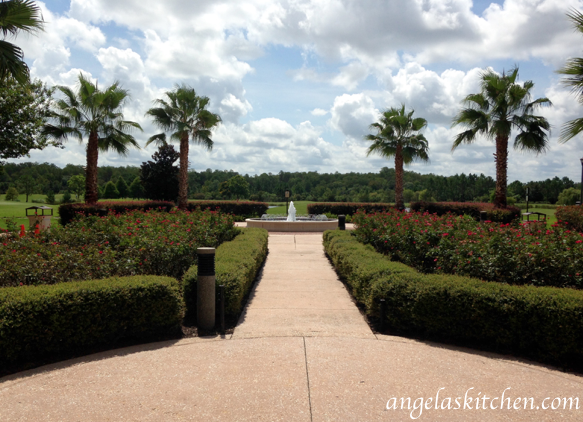 Rosen Shingle Creek rose garden
